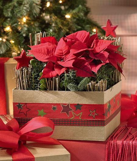 Confezioni regalo parafarmacia dello speziale for Te lo regalo se vieni a prenderlo sito